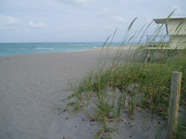 Hobe Sound Florida Area Information Martin County Fl